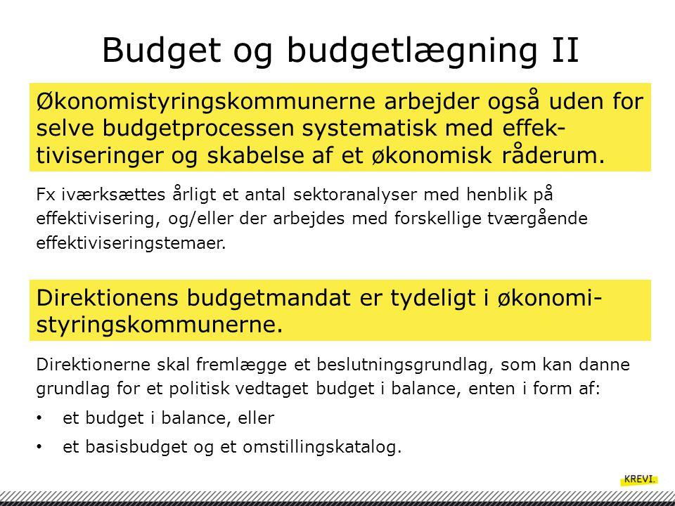 Budget og budgetlægning II