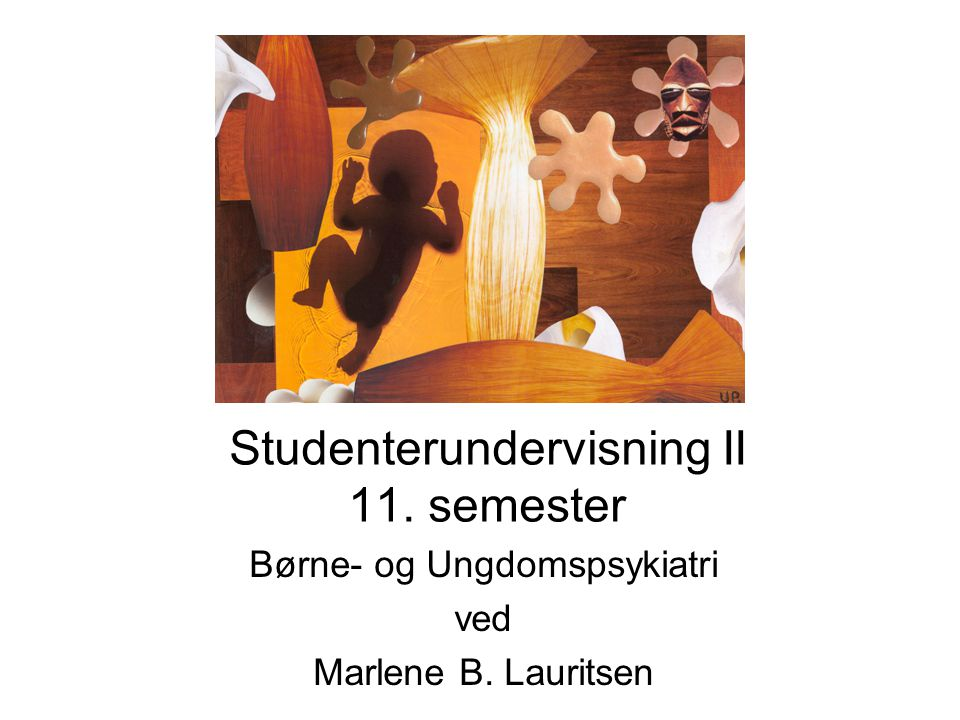 Studenterundervisning II 11. semester