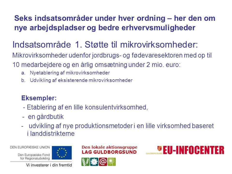 Indsatsområde 1. Støtte til mikrovirksomheder: