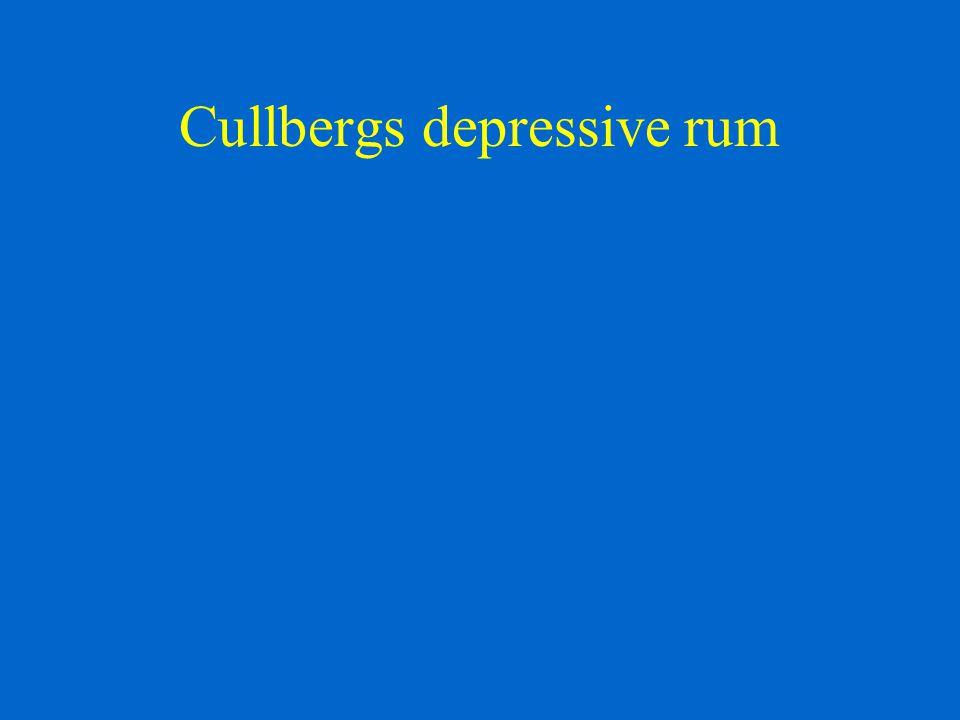 Cullbergs depressive rum