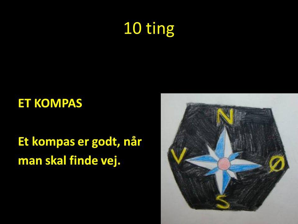 10 ting ET KOMPAS Et kompas er godt, når man skal finde vej.