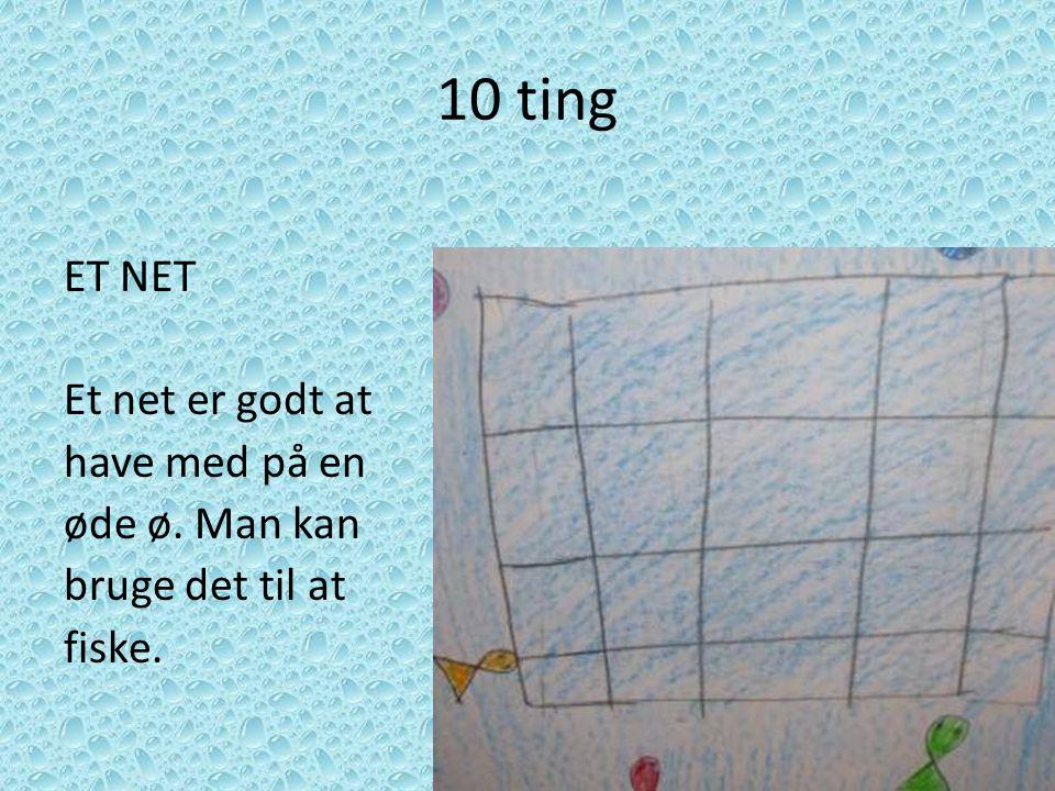 10 ting ET NET Et net er godt at have med på en øde ø. Man kan bruge det til at fiske.