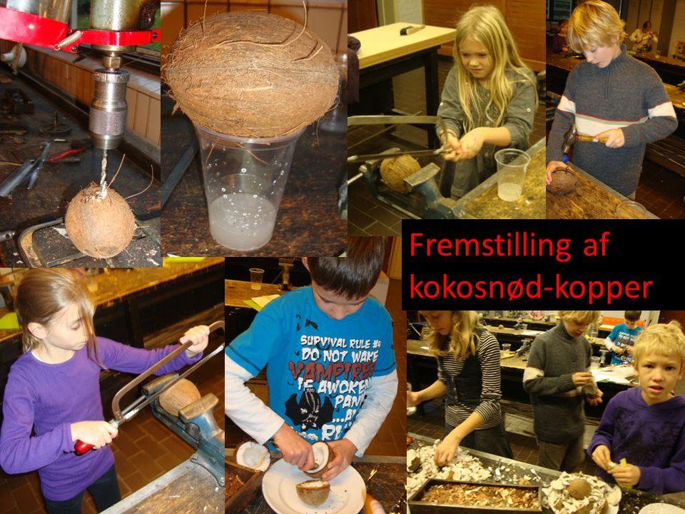 Fremstilling af kokosnød-kopper