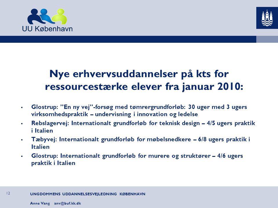 Nye erhvervsuddannelser på kts for ressourcestærke elever fra januar 2010: