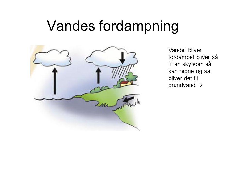 Vandes fordampning Vandet bliver fordampet bliver så til en sky som så kan regne og så bliver det til grundvand 