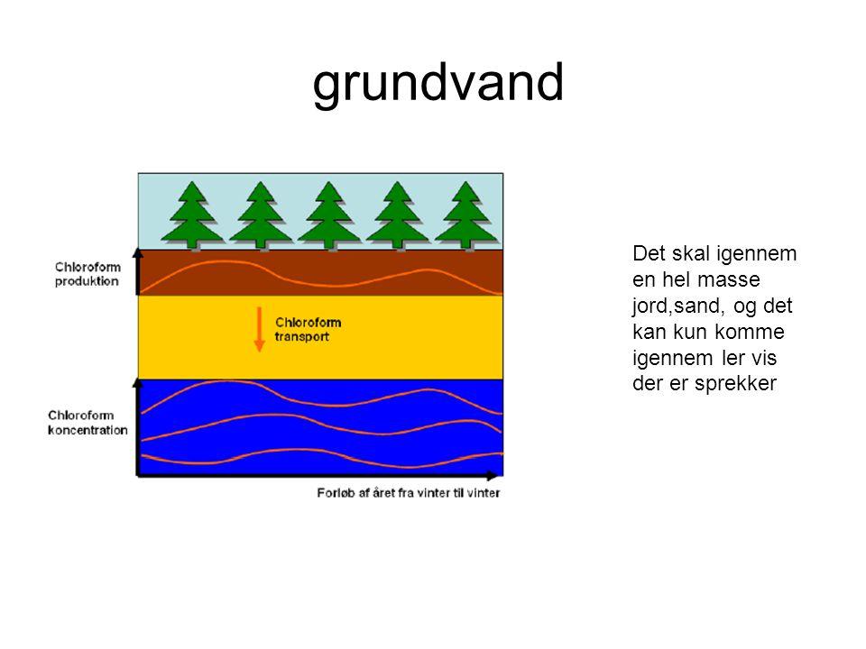 grundvand Det skal igennem en hel masse jord,sand, og det kan kun komme igennem ler vis der er sprekker.