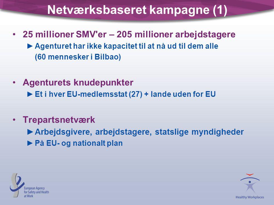 Netværksbaseret kampagne (1)