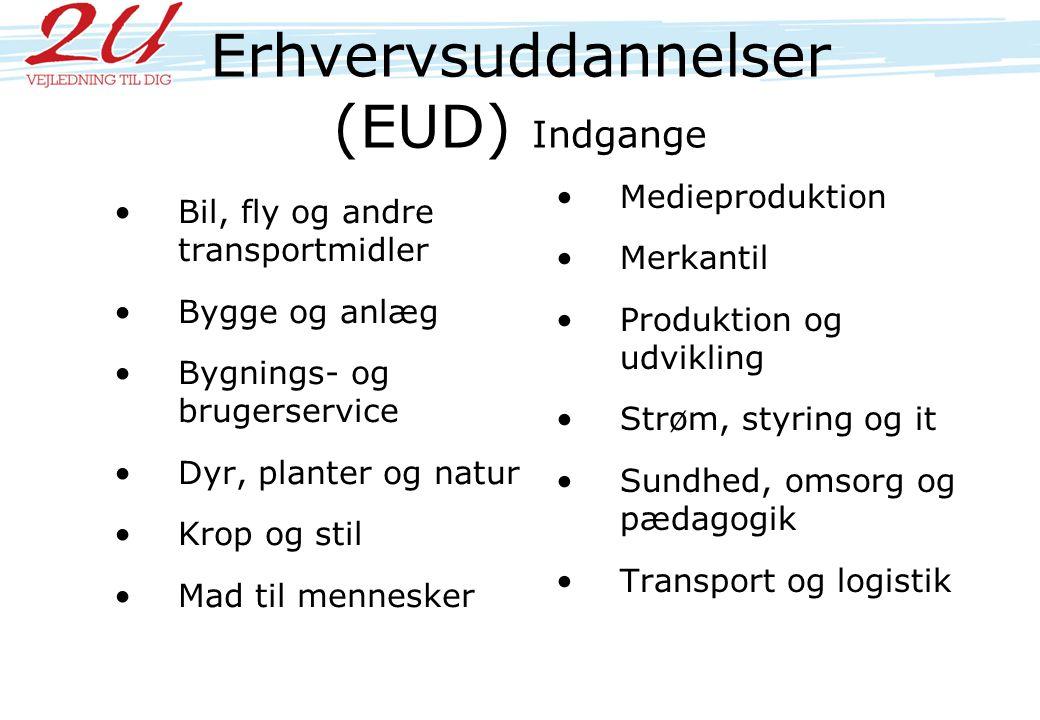 Erhvervsuddannelser (EUD) Indgange