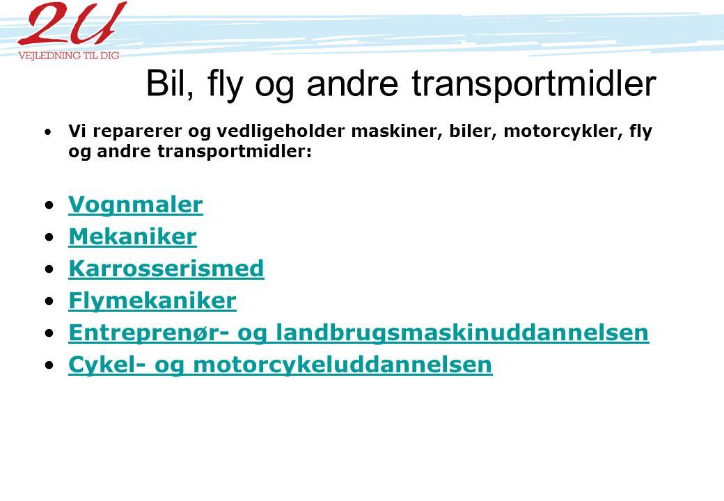 Bil, fly og andre transportmidler