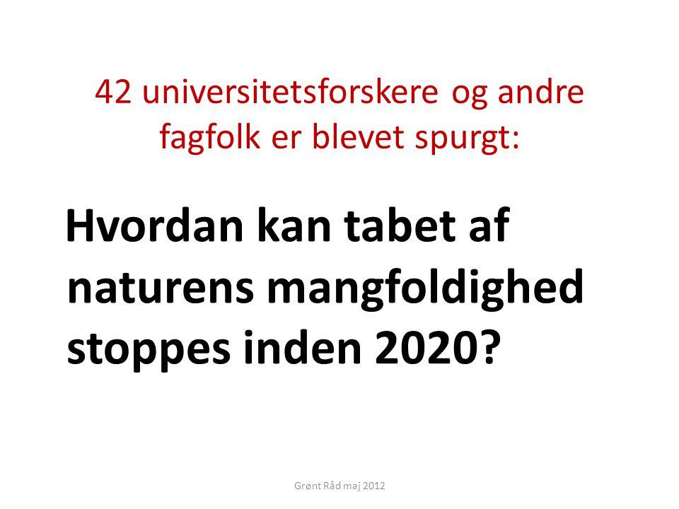 42 universitetsforskere og andre fagfolk er blevet spurgt: