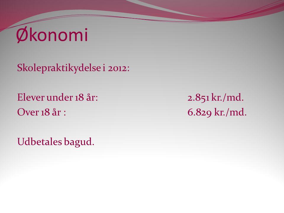 Økonomi Skolepraktikydelse i 2012: Elever under 18 år: 2.851 kr./md.