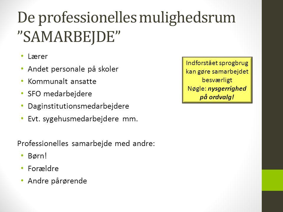 De professionelles mulighedsrum SAMARBEJDE