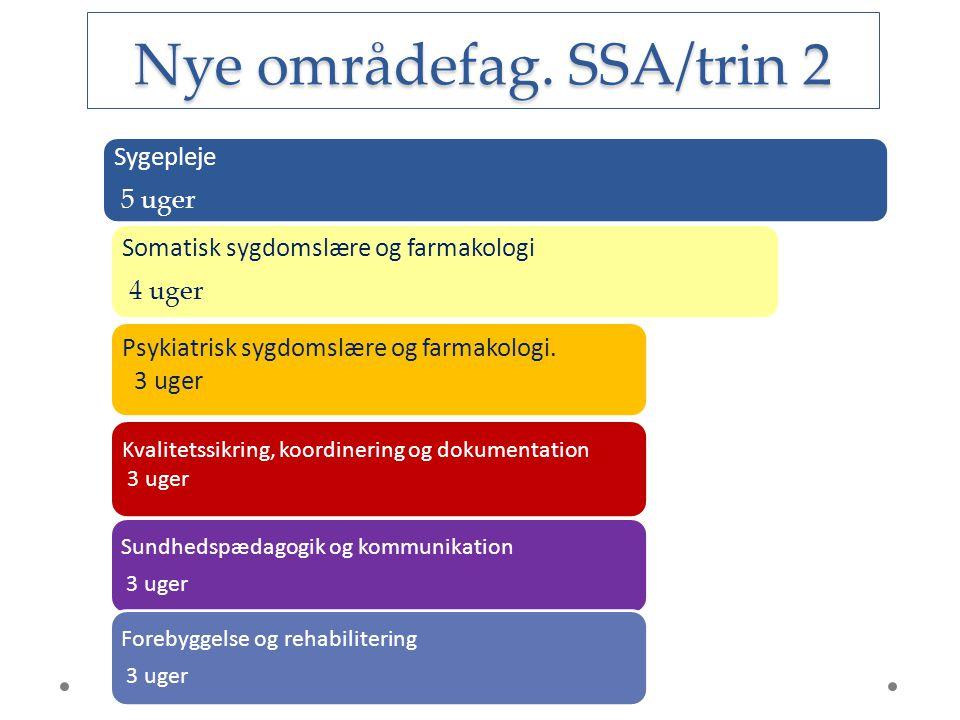 Nye områdefag. SSA/trin 2