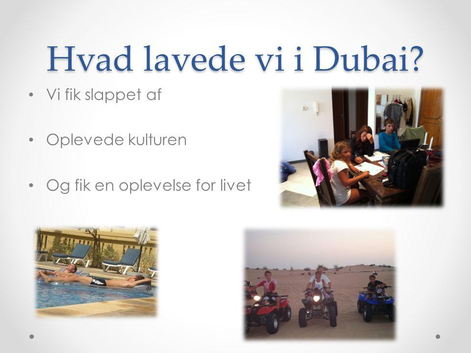 Hvad lavede vi i Dubai Vi fik slappet af Oplevede kulturen