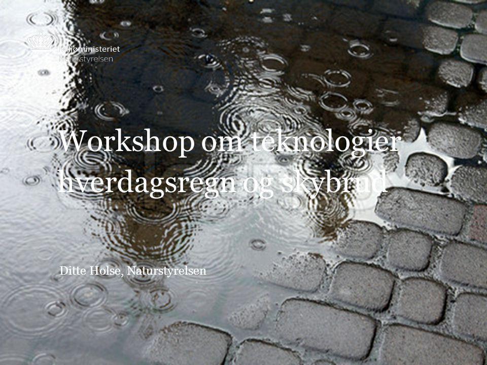 Workshop om teknologier hverdagsregn og skybrud