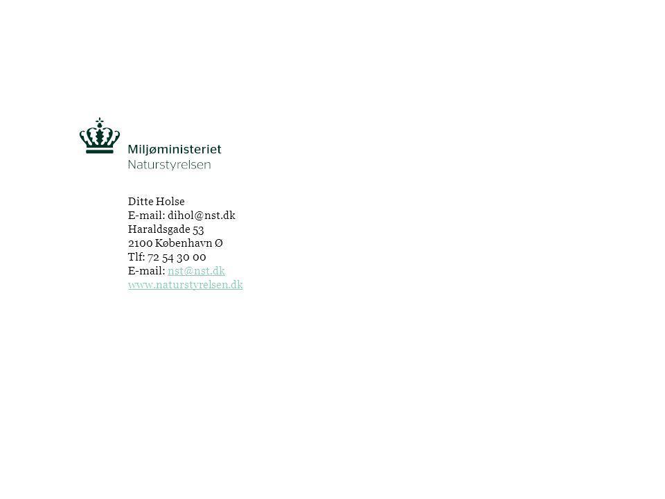 Ditte Holse E-mail: dihol@nst.dk Haraldsgade 53 2100 København Ø