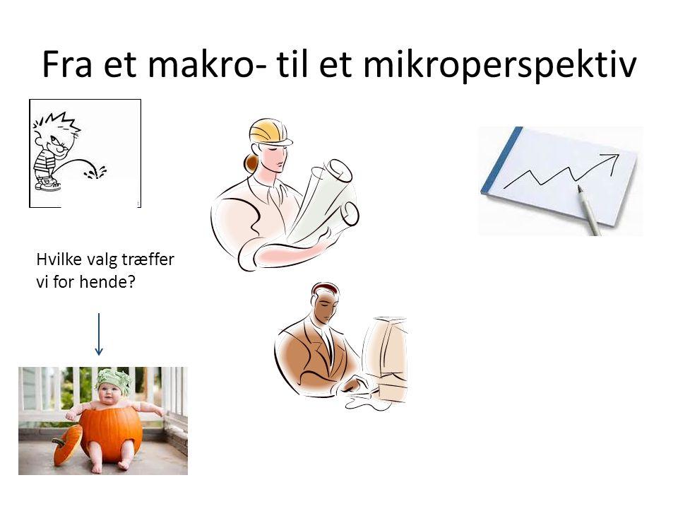 Fra et makro- til et mikroperspektiv