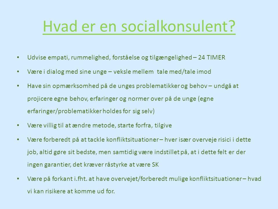 Hvad er en socialkonsulent