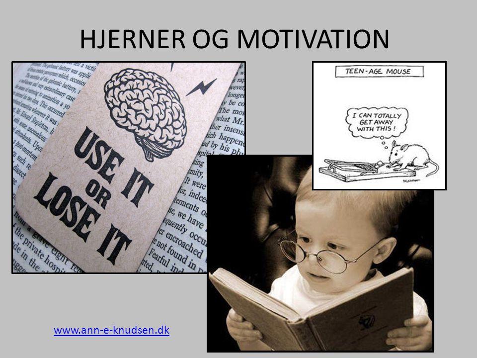 HJERNER OG MOTIVATION www.ann-e-knudsen.dk