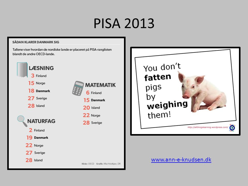 PISA 2013 www.ann-e-knudsen.dk