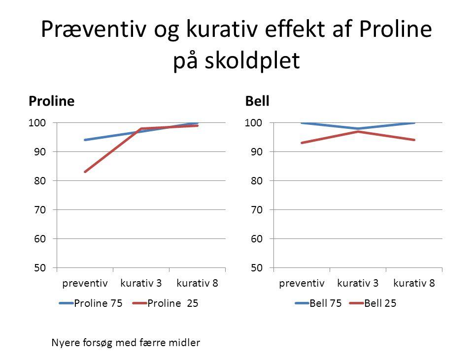 Præventiv og kurativ effekt af Proline på skoldplet