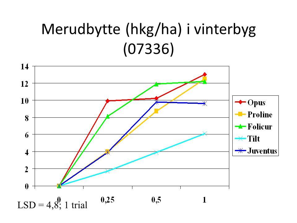 Merudbytte (hkg/ha) i vinterbyg (07336)