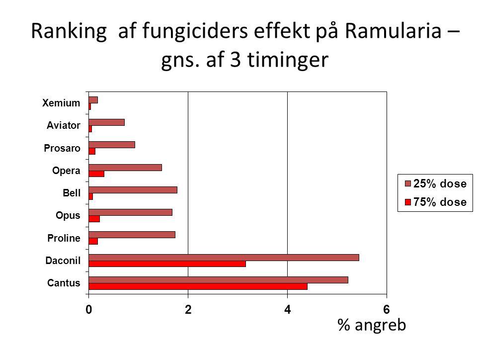 Ranking af fungiciders effekt på Ramularia – gns. af 3 timinger