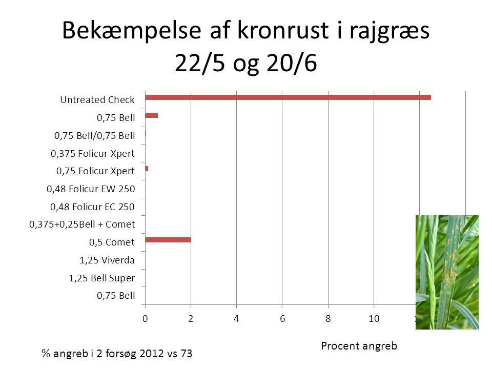 Bekæmpelse af kronrust i rajgræs 22/5 og 20/6