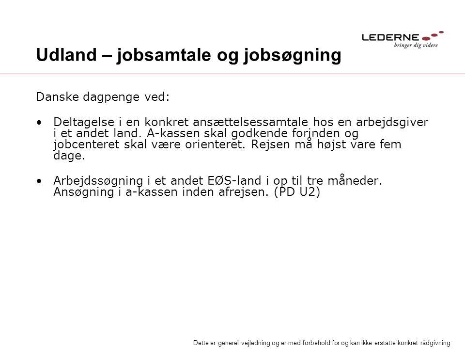 Udland – jobsamtale og jobsøgning