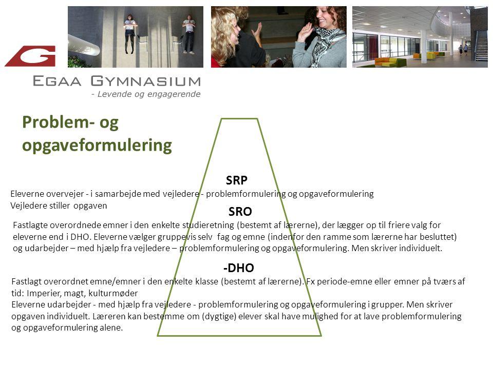 Problem- og opgaveformulering SRP SRO -DHO
