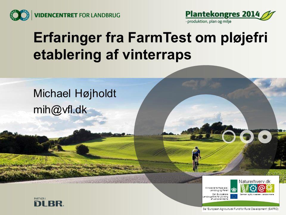 Erfaringer fra FarmTest om pløjefri etablering af vinterraps