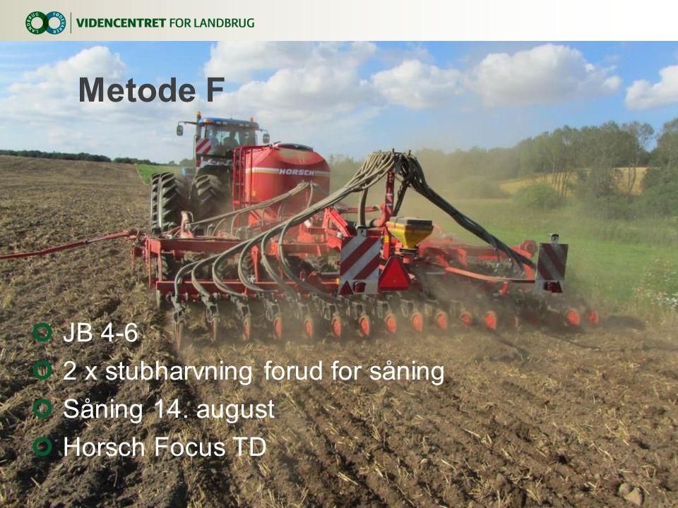 Metode F JB 4-6 2 x stubharvning forud for såning Såning 14. august