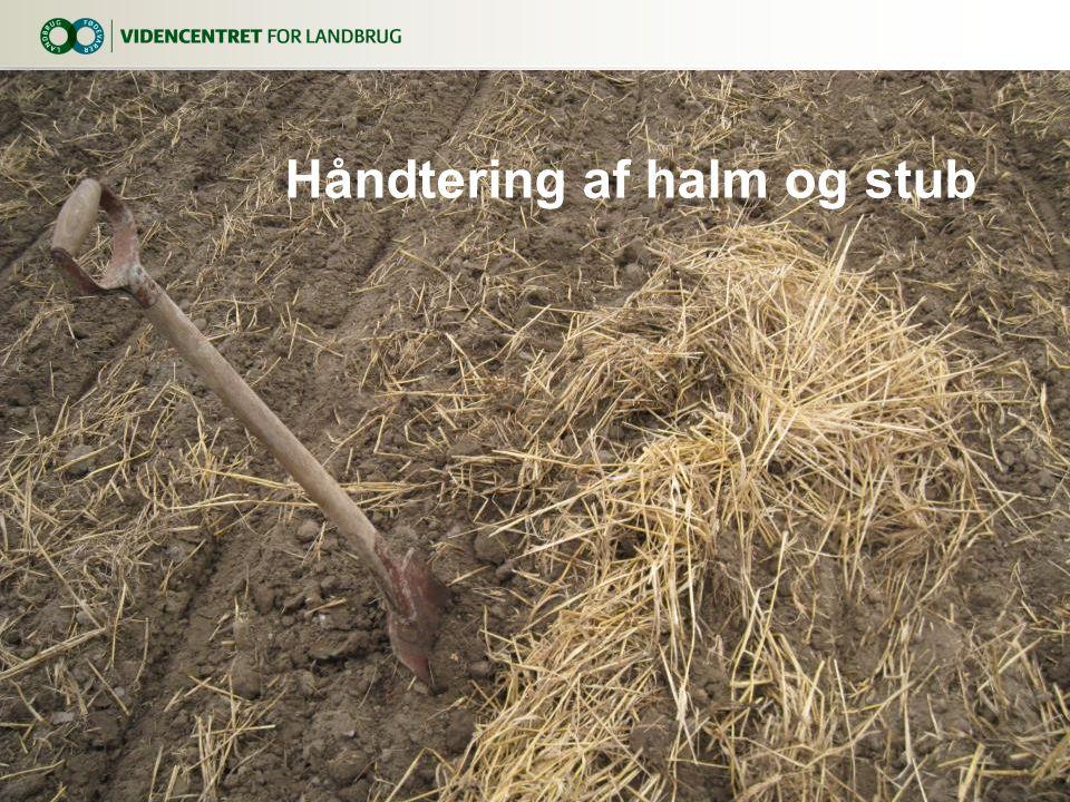 Håndtering af halm og stub