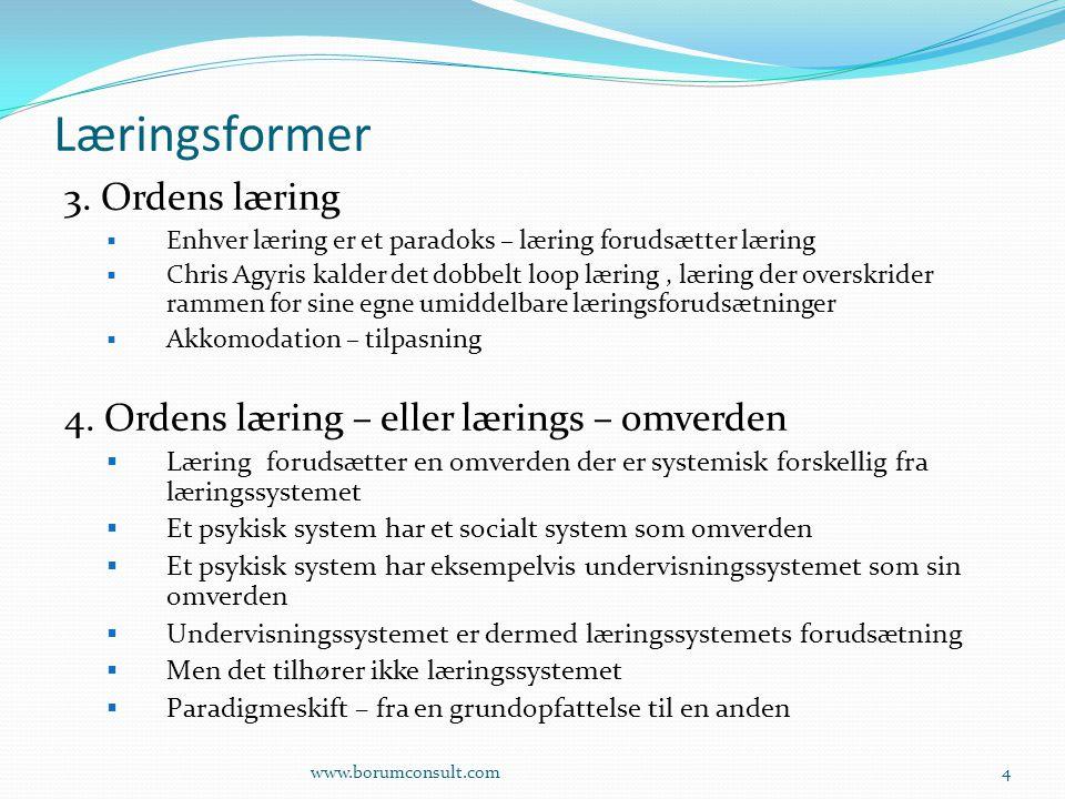 Læringsformer 3. Ordens læring