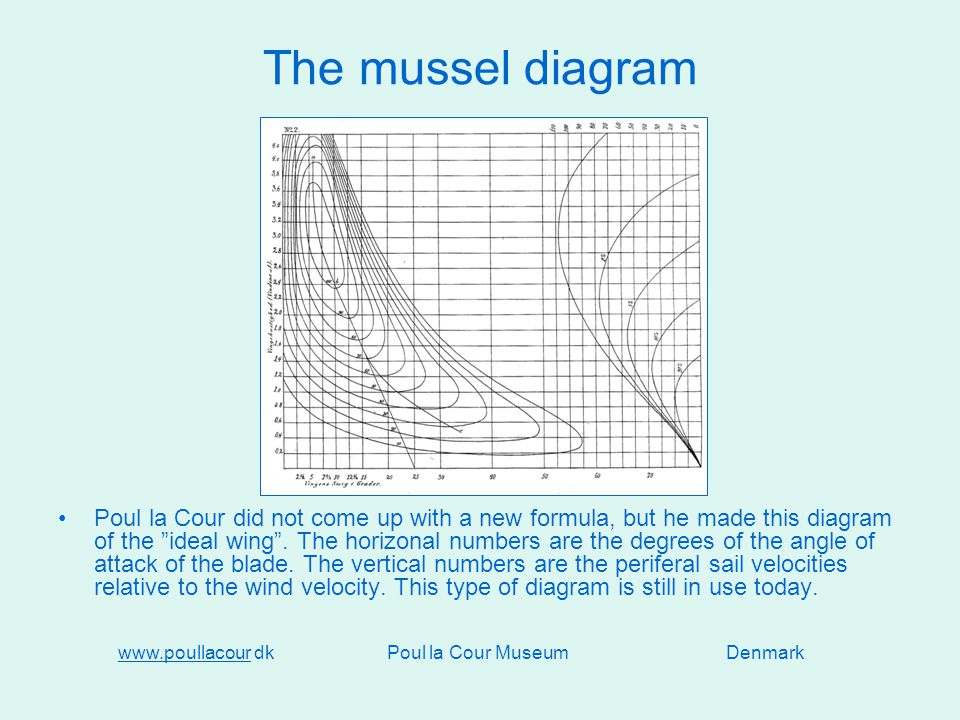 The mussel diagram