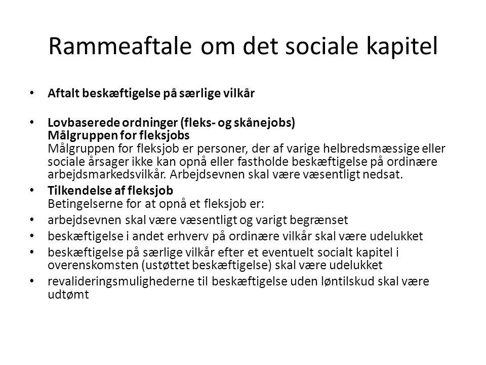 Rammeaftale om det sociale kapitel