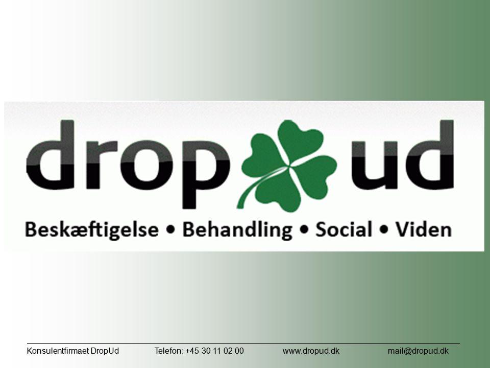Konsulentfirmaet DropUd Telefon: +45 30 11 02 00 www. dropud. dk
