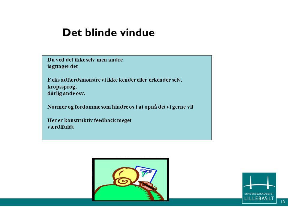 Det blinde vindue Du ved det ikke selv men andre iagttager det