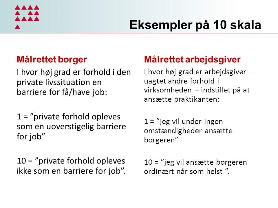 Eksempler på 10 skala Målrettet borger Målrettet arbejdsgiver