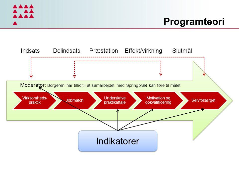 Programteori Indikatorer