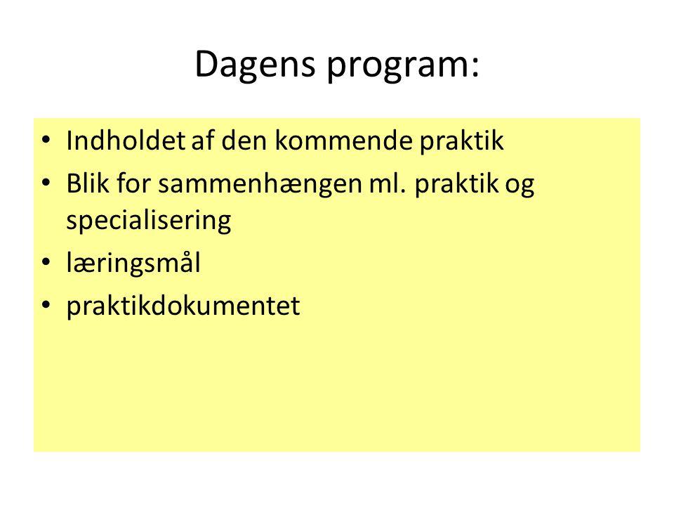 Dagens program: Indholdet af den kommende praktik