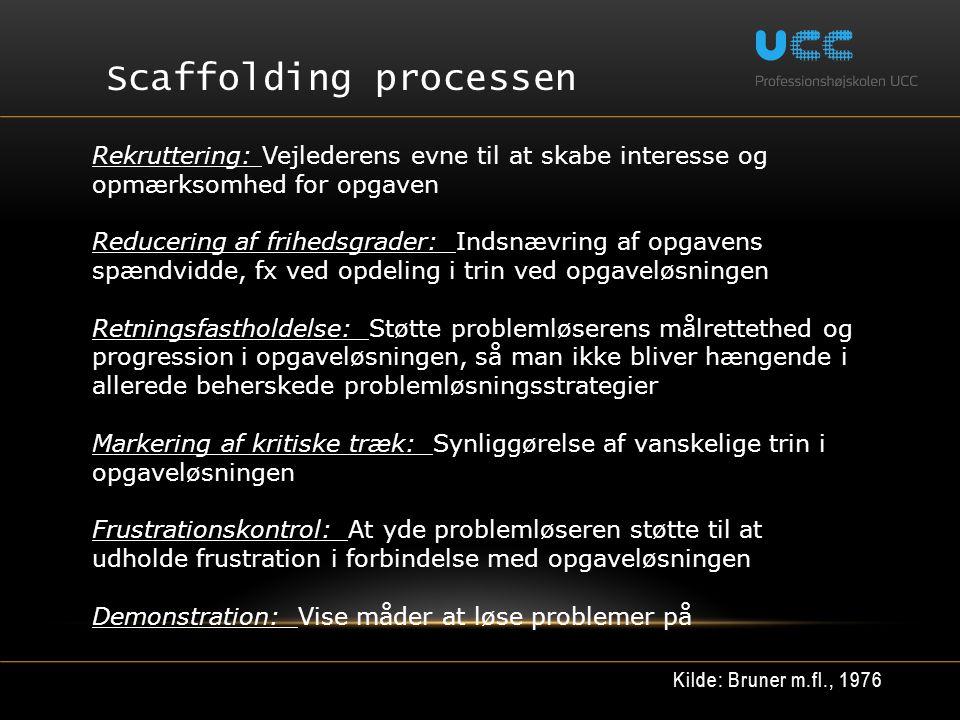 Scaffolding processen