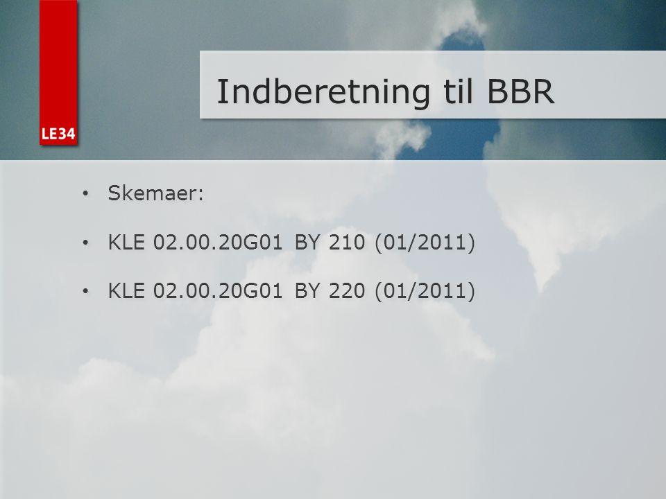 Indberetning til BBR Skemaer: KLE 02.00.20G01 BY 210 (01/2011)