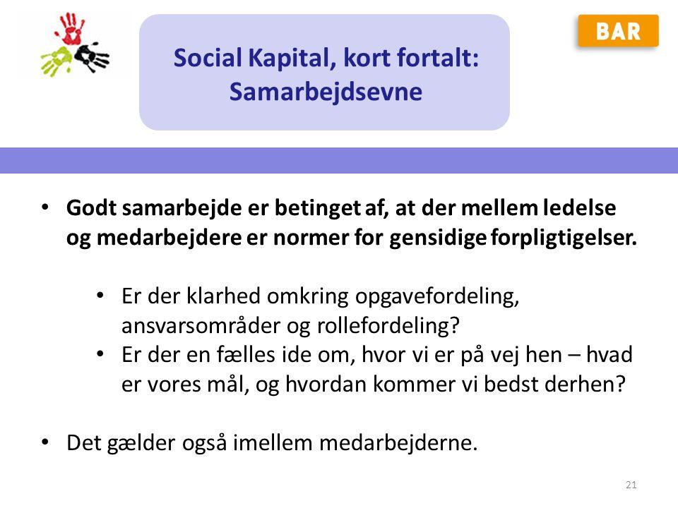Social Kapital, kort fortalt: