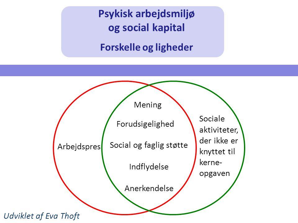 Psykisk arbejdsmiljø og social kapital