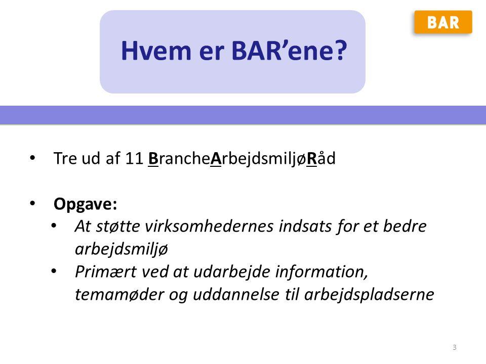 Hvem er BAR'ene Tre ud af 11 BrancheArbejdsmiljøRåd Opgave: