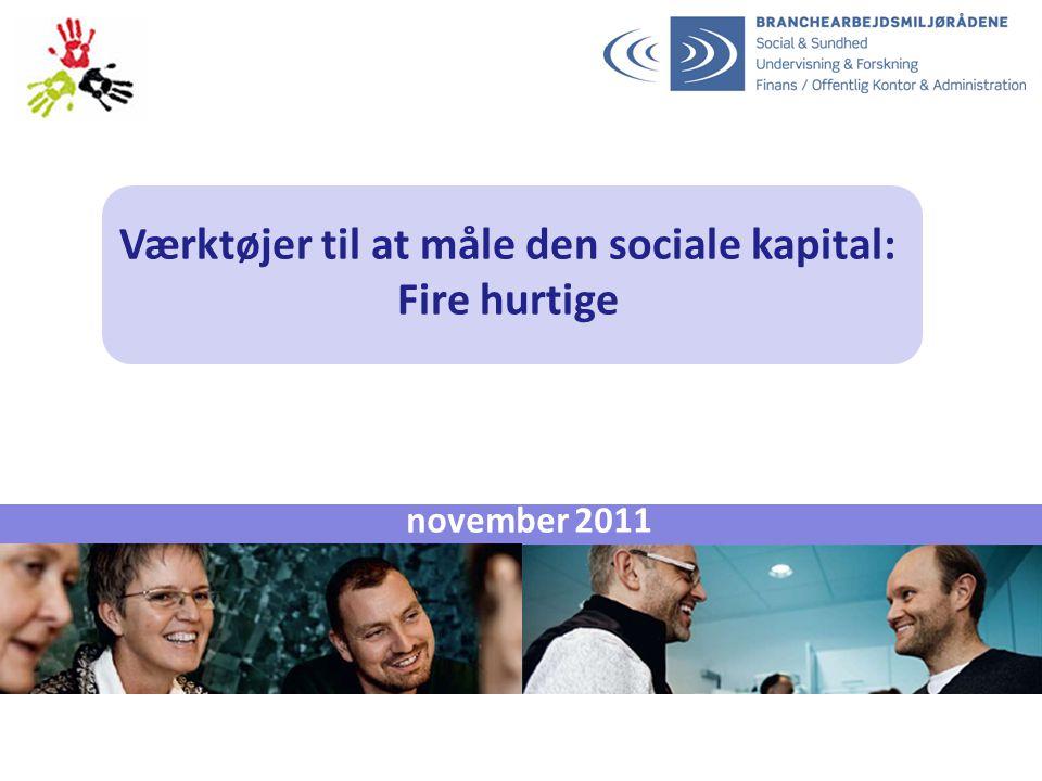 Værktøjer til at måle den sociale kapital: