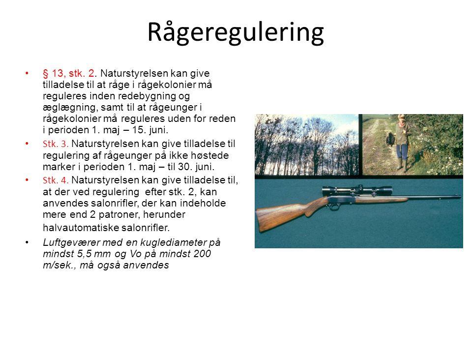Rågeregulering