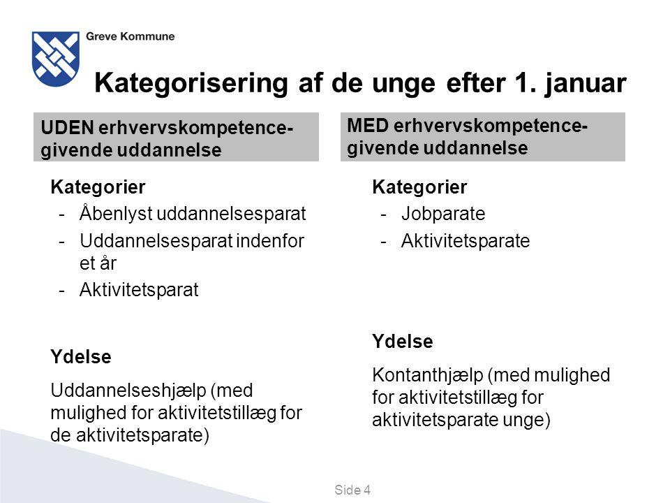 Kategorisering af de unge efter 1. januar