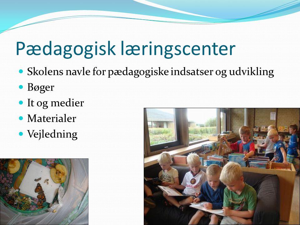 Pædagogisk læringscenter